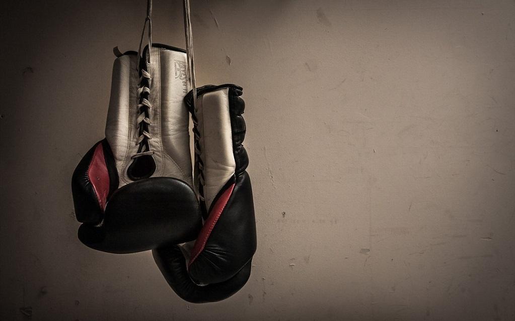 Бокс в Новогорске